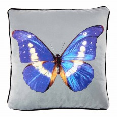 Butterfly Blue 45 x 45 Cushion Complete With Feather Interior
